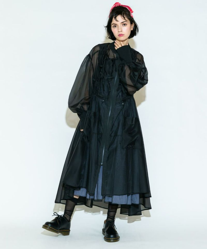 RIBBON SHEER DRESS
